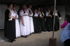 Zeravac31